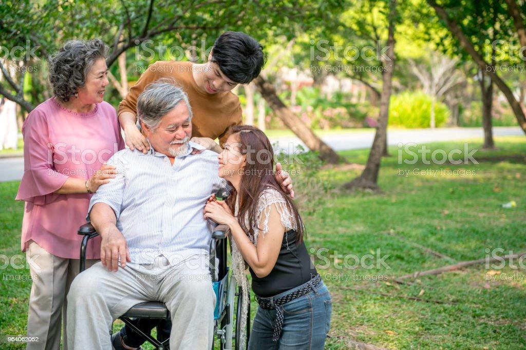 公園で家族と年配の男性。中国老人は車椅子と彼の上級の中国の妻、孫と娘一緒に、それぞれ他の話。家族の保険概念。 - シニア世代のロイヤリティフリーストックフォト