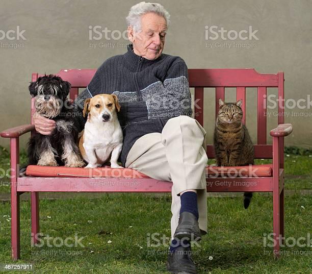 Senior man with pets picture id467257911?b=1&k=6&m=467257911&s=612x612&h=yfu yn2 zsv02sa5dk4rh74 ydvmgvnikpnwn upzko=