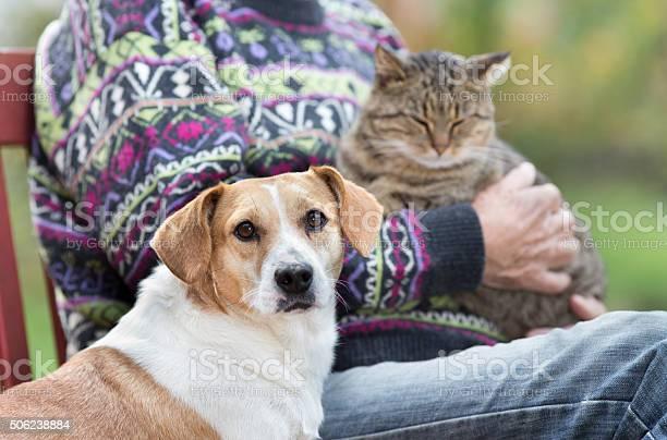Senior man with pets picture id506238884?b=1&k=6&m=506238884&s=612x612&h=c4dcuvmgalz mpf0l20baan vlvs6h1fo3nkq1oqkne=