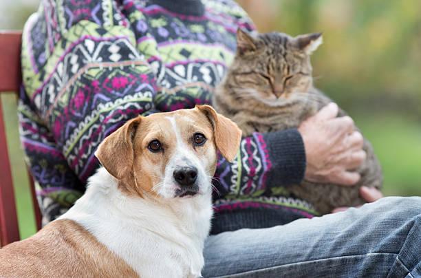 Senior man with pets picture id506238884?b=1&k=6&m=506238884&s=612x612&w=0&h=m6dlpmqsdp i3qf9zan3azl7dbzvtjprbjrie1vpwpi=