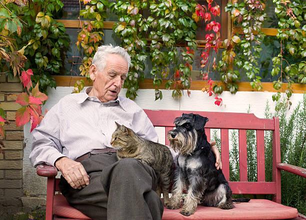 Senior man with pets picture id523179347?b=1&k=6&m=523179347&s=612x612&w=0&h=17vbt3f7cfryoszow6xz8dsw8h9q 1cs bjhrancrtu=
