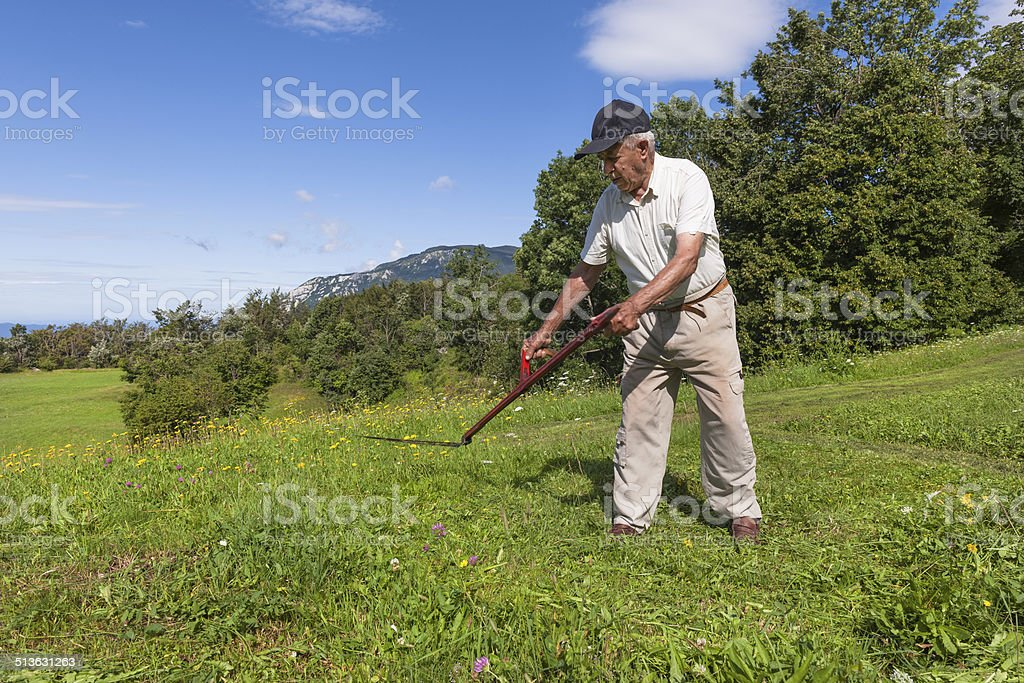 Senior Man with Scythe, Europe stock photo