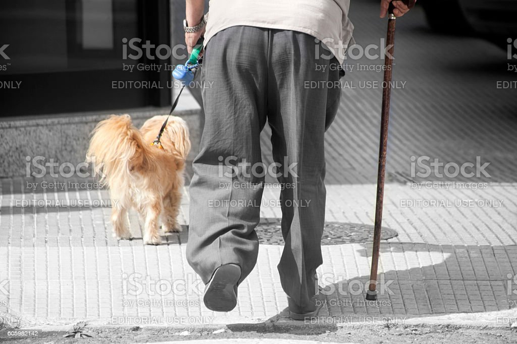 Senior man with walking cane and a dog. stock photo