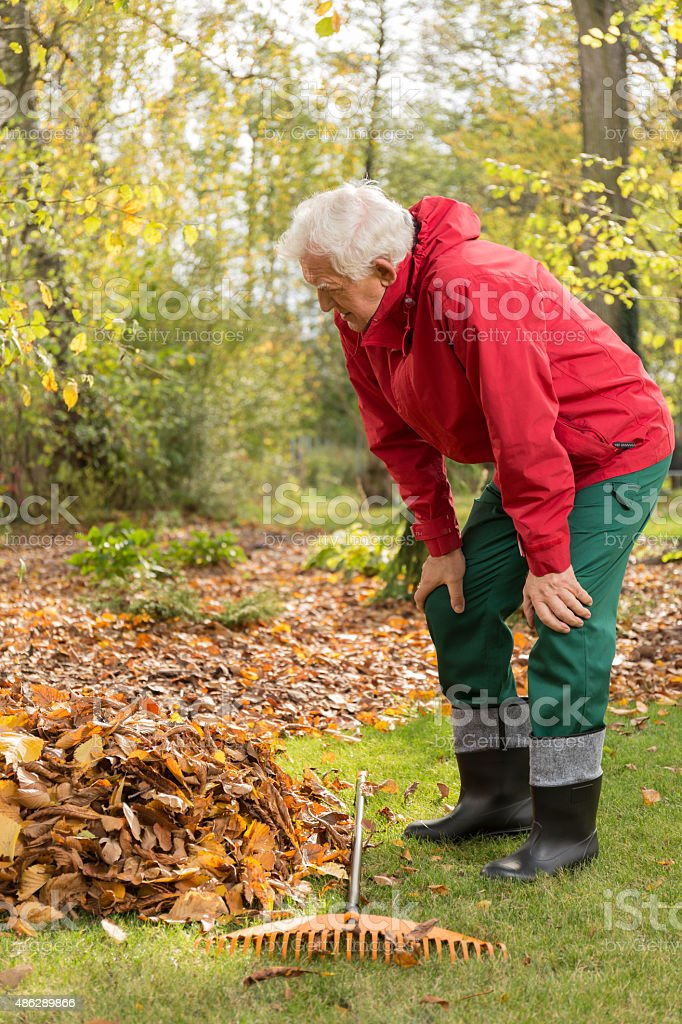 Senior man working in a garden stock photo