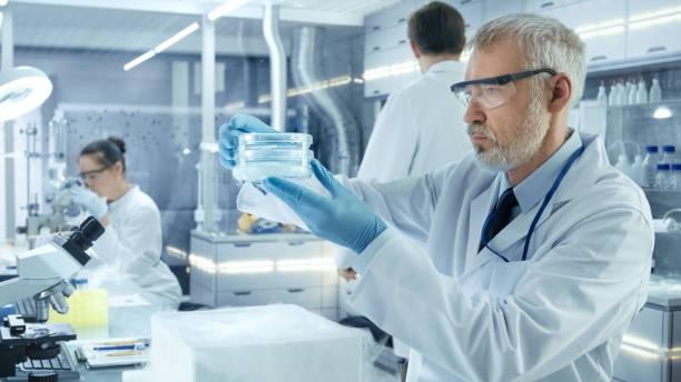 senior medical research scientist nimmt petrischale mit proben von geöffneten kühlbox. er arbeitet in einem belebten zentrum für moderne labor. - versuche nicht zu lachen stock-fotos und bilder