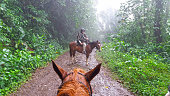 Senior men in rain on horseback riding on dirt road in the tropical rainforest. At the foot of Volcano Arenal in tropical forest of Costa Rica. In front view from horse back (horse head only).