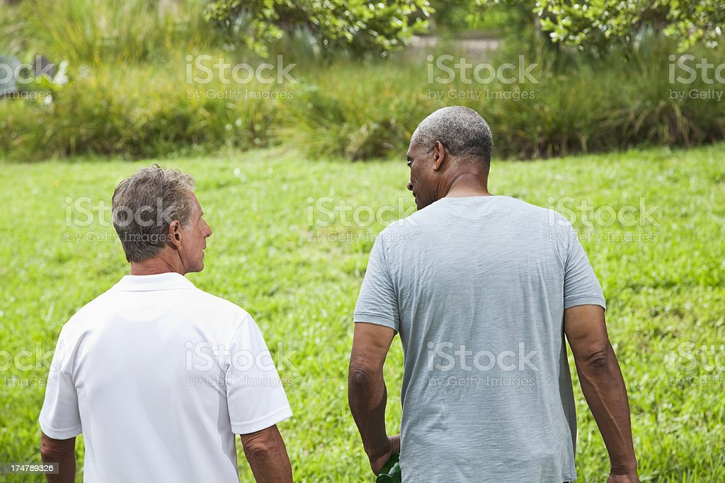 Senior men walking in park stock photo