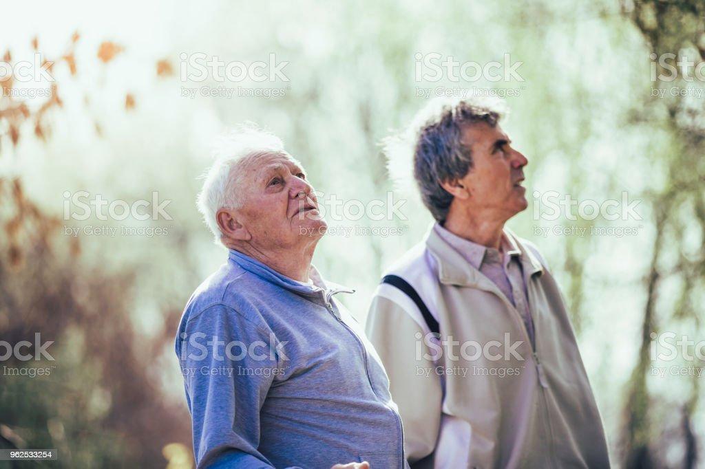 Senior men walking in park - Royalty-free 60-69 Years Stock Photo