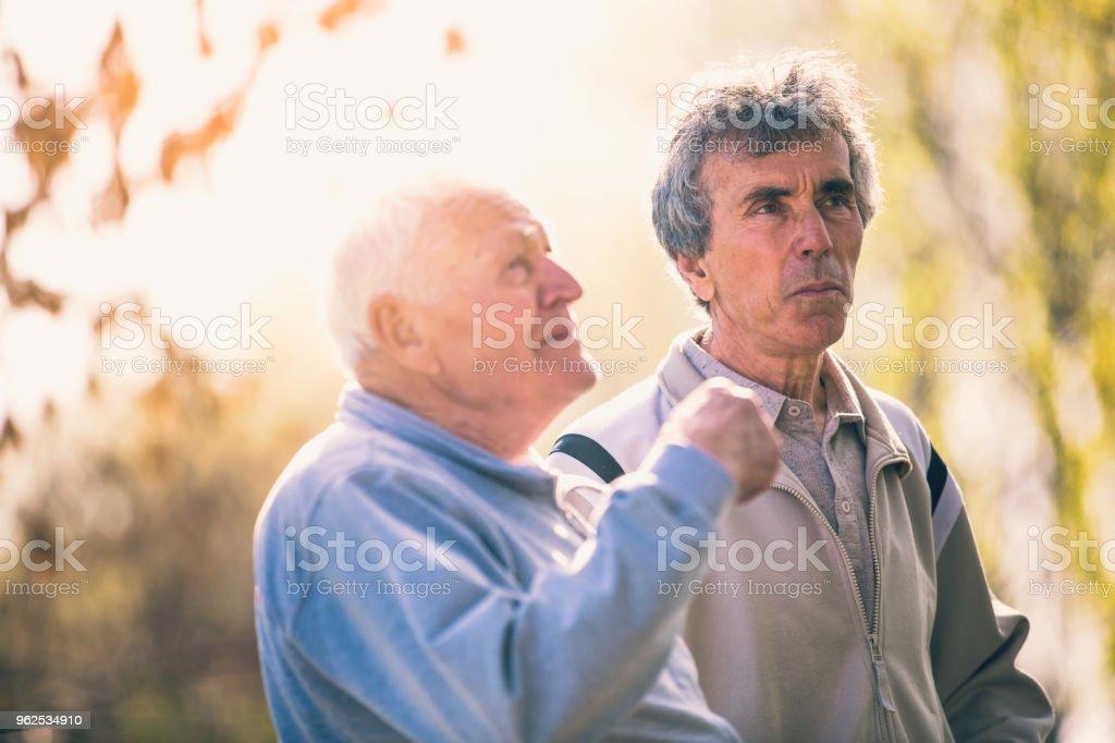 Homens Idosos caminhando no parque - Foto de stock de 60 Anos royalty-free
