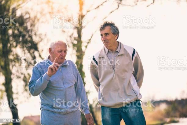 Foto de Homens Idosos Caminhando No Parque e mais fotos de stock de 60 Anos