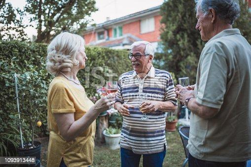 Senior people, friends, spending time together, having fun, enjoying backyard barbecue