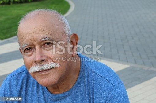 Senior retired man looking at camera.