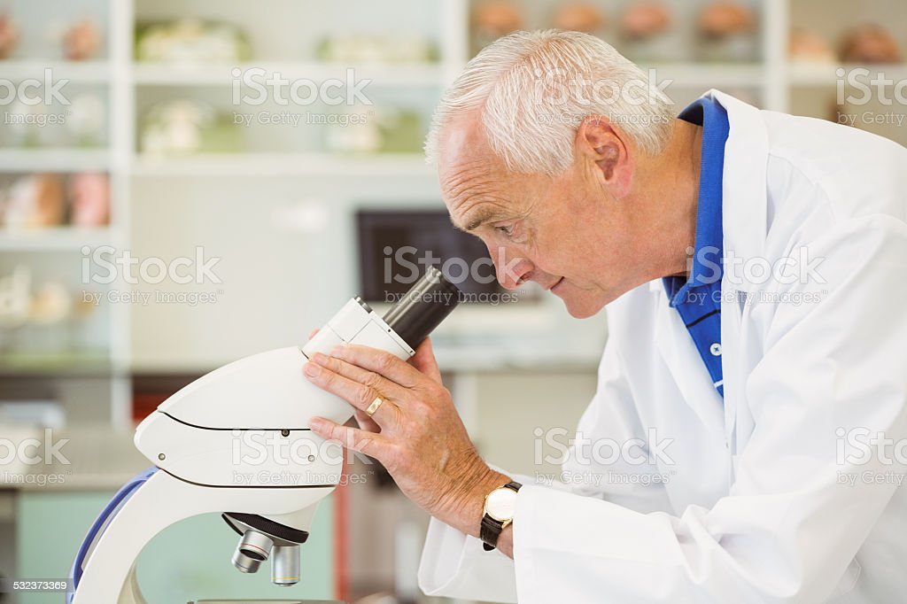 Senior scientist looking through microscope stock photo