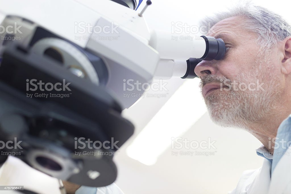 Senior scientist  microscoping in lab. royalty-free stock photo