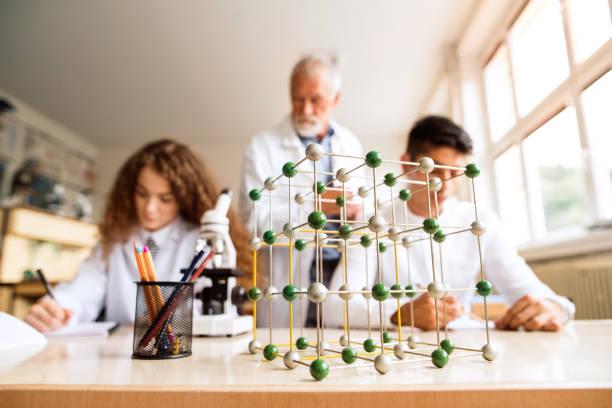 senior teacher teaching biology to high school students in laboratory. - compagni scuola foto e immagini stock