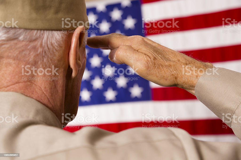 Senior veteran saluting American flag stock photo