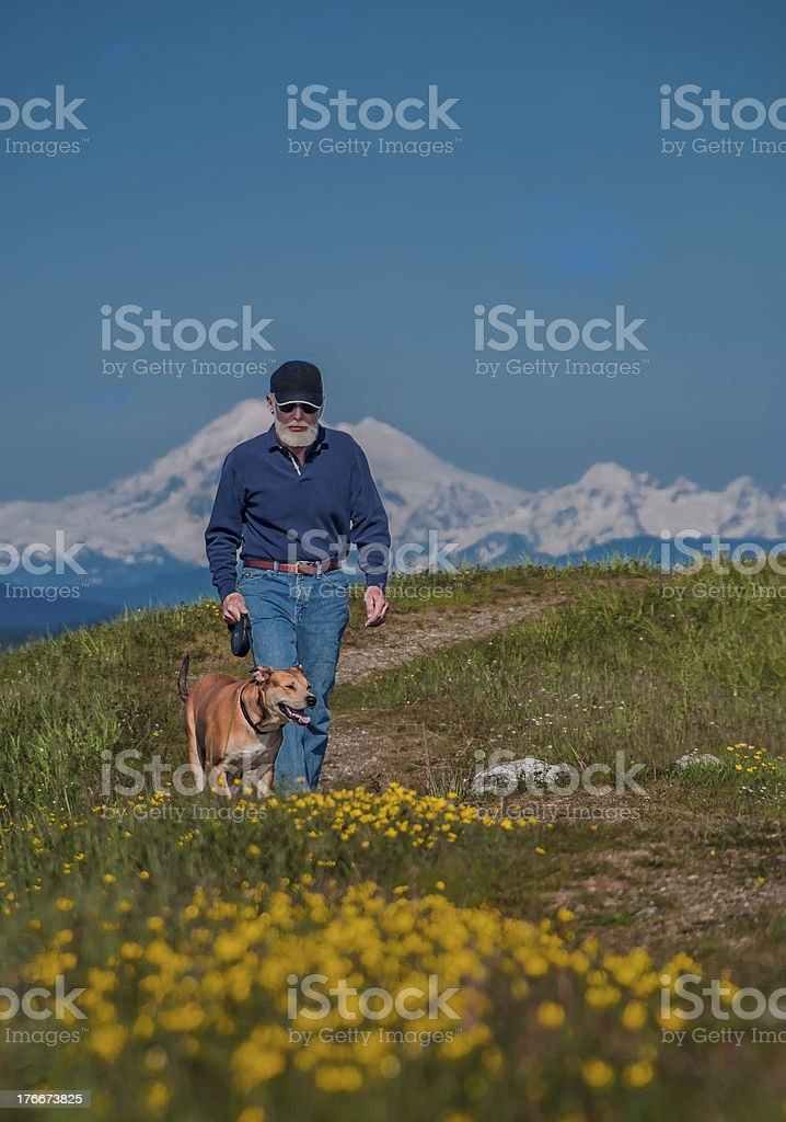 Senior walking dog royalty-free stock photo