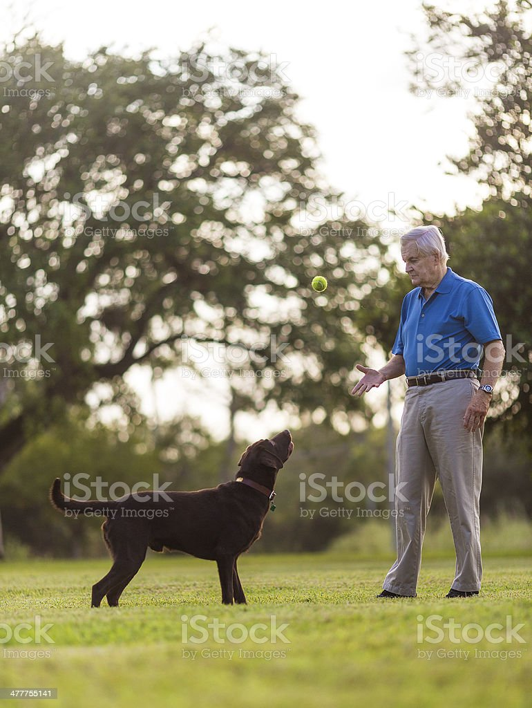 senior with dog royalty-free stock photo