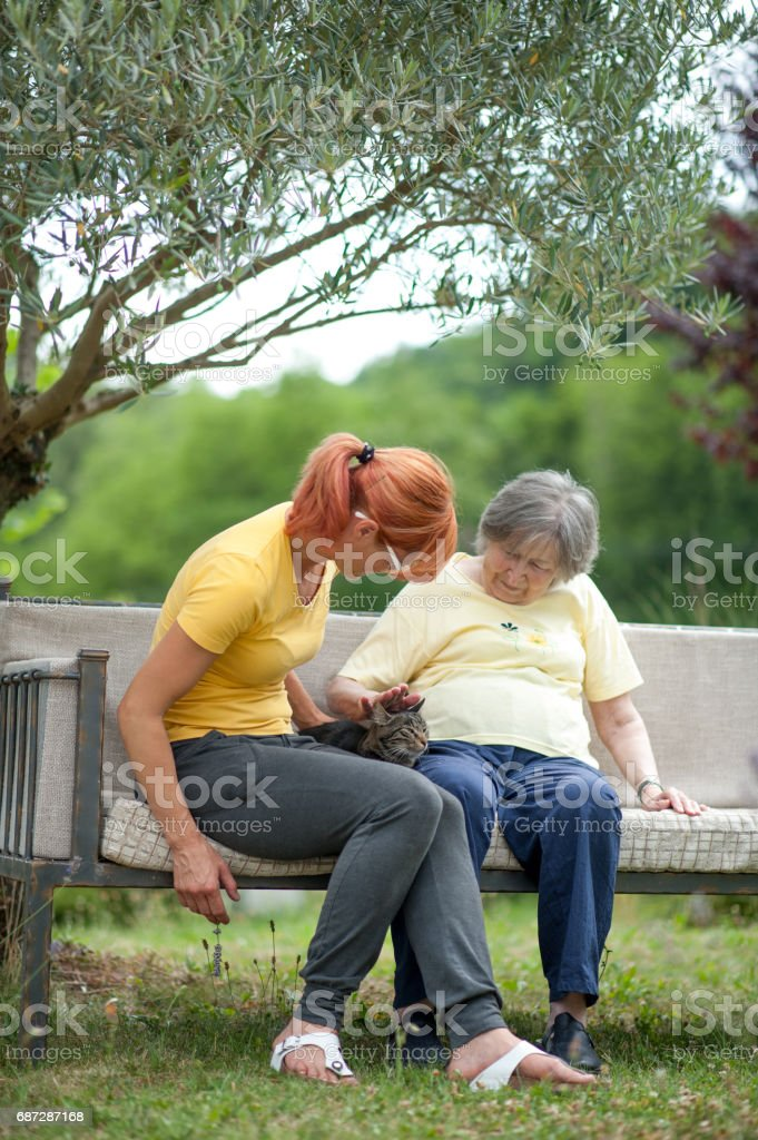 Senior Woman And Assistant In The Retirement Community Sitting At The...