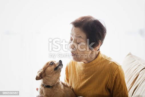 An asian senior woman and dog relaxed at home.