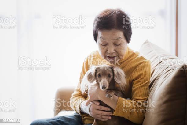 Senior woman and dog at home picture id986566636?b=1&k=6&m=986566636&s=612x612&h=hmkhszruwuhrxq0r dngmbk6k3u2dsqw4qtaxdduqeq=