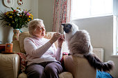 Senior woman sitting in her armchair with her pet cat. She is enjoying the company