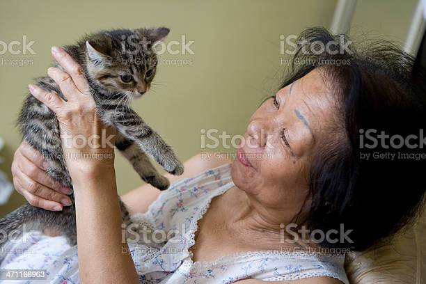 Senior woman and kitten picture id471166963?b=1&k=6&m=471166963&s=612x612&h=ulufsy73hysyxkdd4qt6wh75frgxseubit9ghblz058=