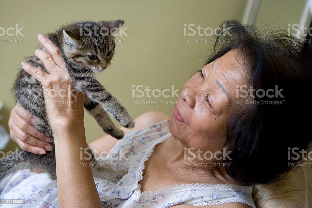 Senior woman and kitten stock photo