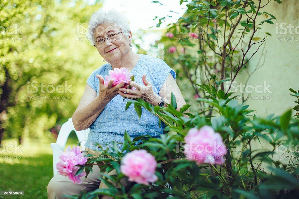 Senior woman and peony stock photo
