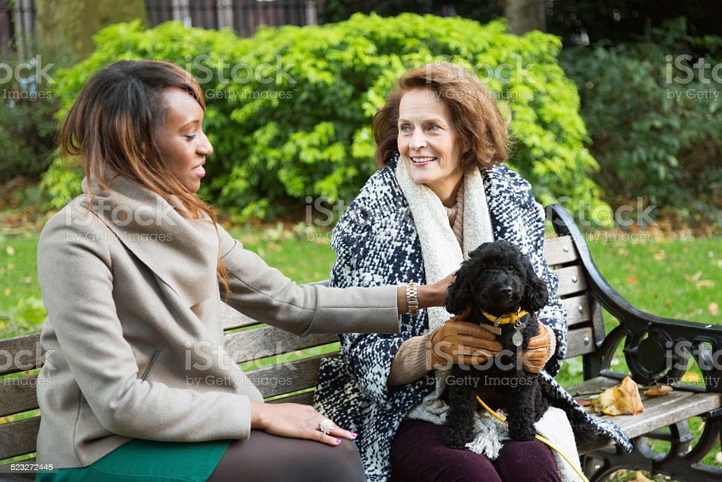 senior woman and young friend talking in park  dog stock photo