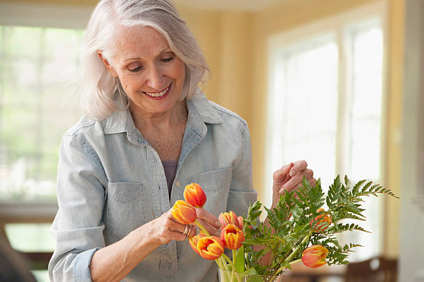 senior woman arranging flowers - arranging stock photos and pictures
