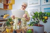 istock Senior woman at home 1145457608