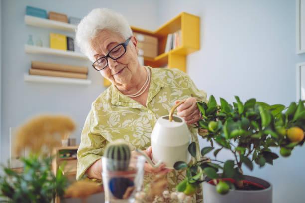 Senior woman at home stock photo