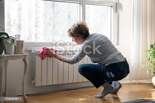Senior  woman cleaning home.