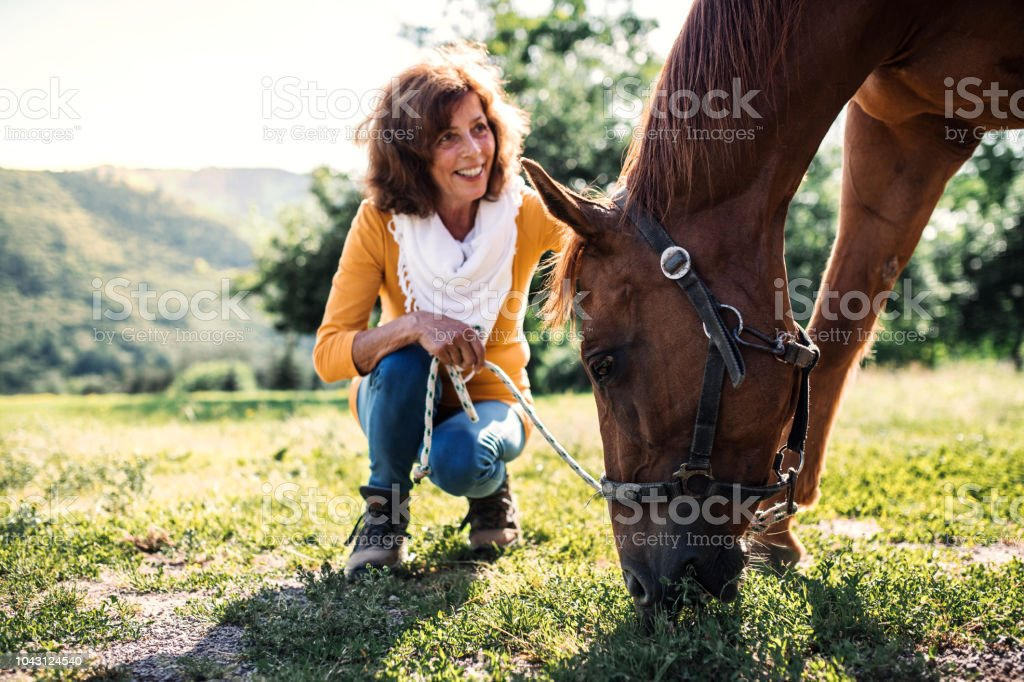 A Senior Woman Crouching And A Horse Grazing By A Stable Stock Photo Download Image Now Istock
