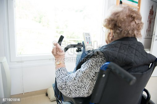 912333752 istock photo Senior Woman Doing a Physiotherapy Exercise in Retirement Home 871901516