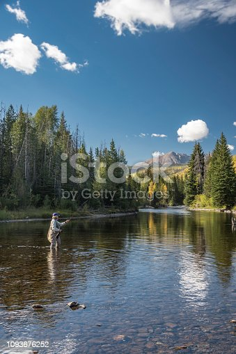 A senior woman fly-fishing in the Blue Rive located in Silverthorne, Summit County, Colorado.  Fall colors are just starting to show.  She is alone in the tranquil environment.