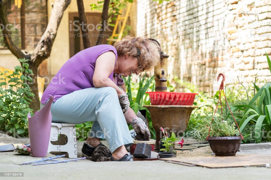 Senior woman gardening in back yard.