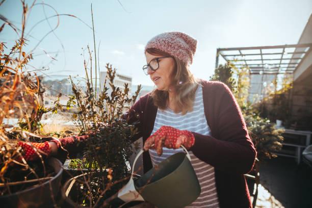 Ältere Frau im Garten auf der Terrasse ihrer Stadt – Foto