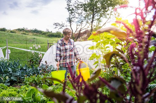Senior Woman gardening - vegetable garden and flowers; Europe; all logos removed; Nikon D850.