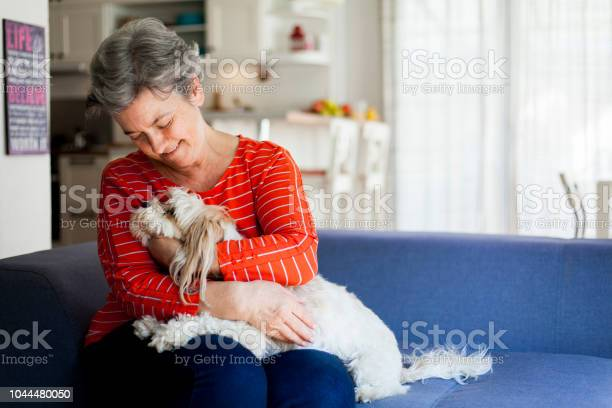 Senior woman having fun with her dog picture id1044480050?b=1&k=6&m=1044480050&s=612x612&h=n6iaddjk9ifkrh4lx9aw2 0h3qxswozhxfnyh  airo=