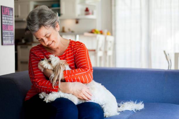 Senior woman having fun with her dog picture id1044480050?b=1&k=6&m=1044480050&s=612x612&w=0&h=jz4klasixhssrehhw yhmiqeynx2kx5awpxvpq 2edm=