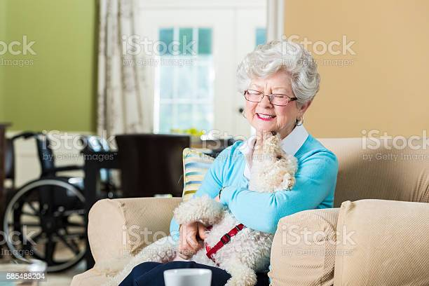 Senior woman hold therapy dog at home picture id585488204?b=1&k=6&m=585488204&s=612x612&h=w0ohhzwl svcqlv3nimgtsbcetpjbmm4vjp 8f8s9mo=
