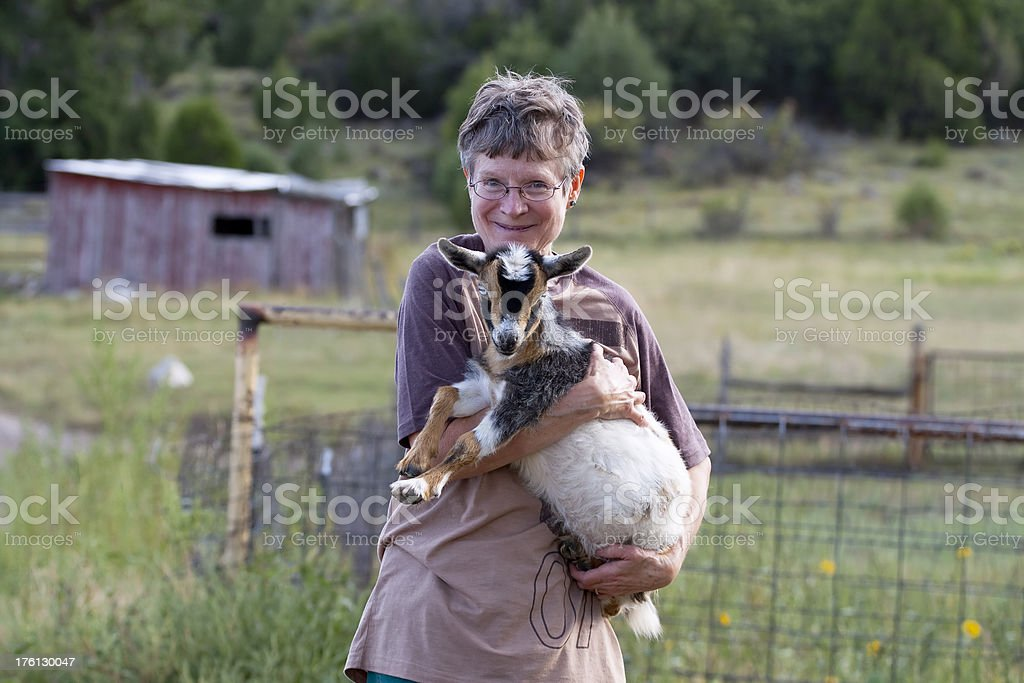 Senior woman holding baby Nigerian Dwarf goat on a farm. stock photo