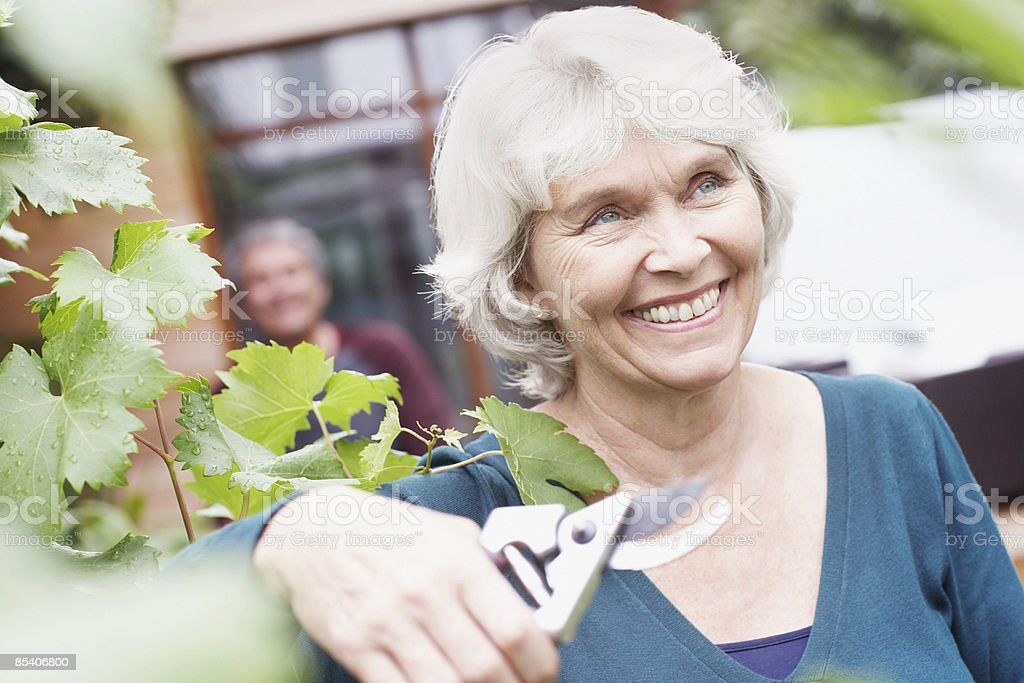 Senior woman holding gardening clippers royalty-free stock photo