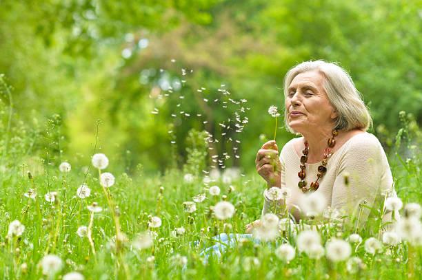ältere frau im grünen park - lebensblume stock-fotos und bilder