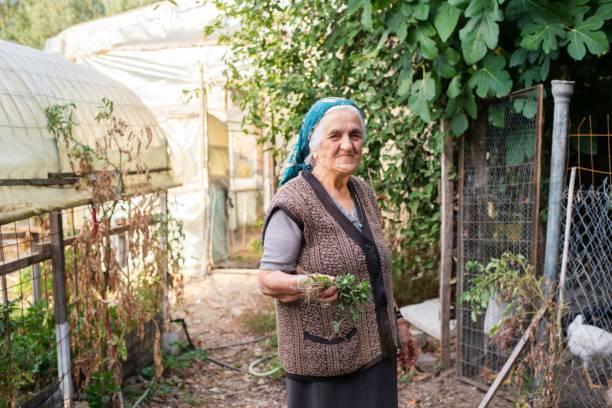 Senior woman in her garden stock photo