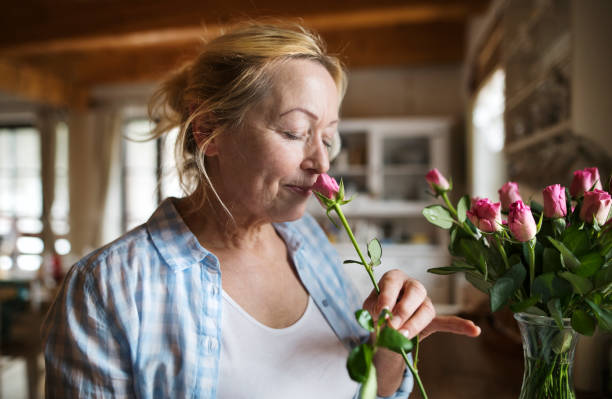 senior woman in her kitchen smelling fragrance of pink rose - profumi foto e immagini stock