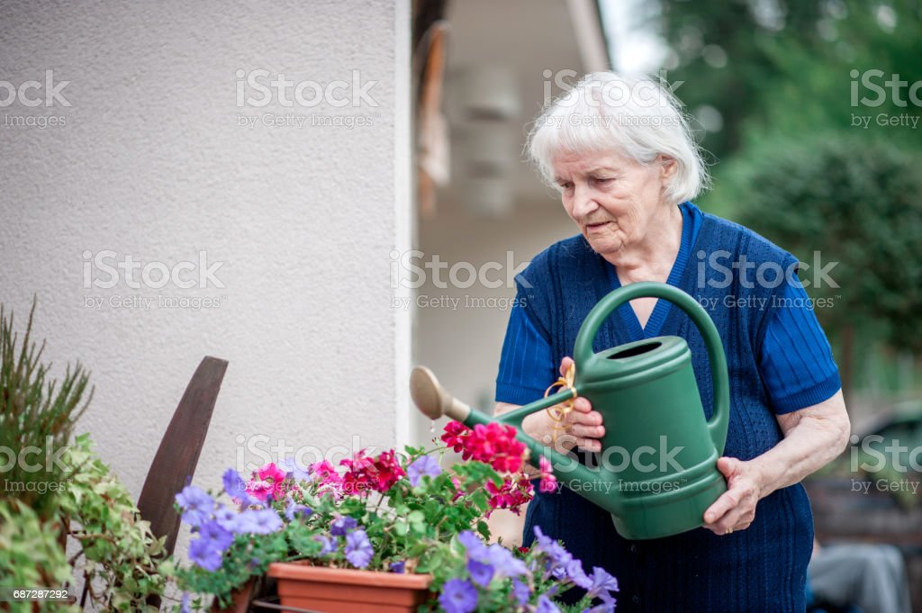 Senior Woman In The Retirement Community Watering Flowers In The...