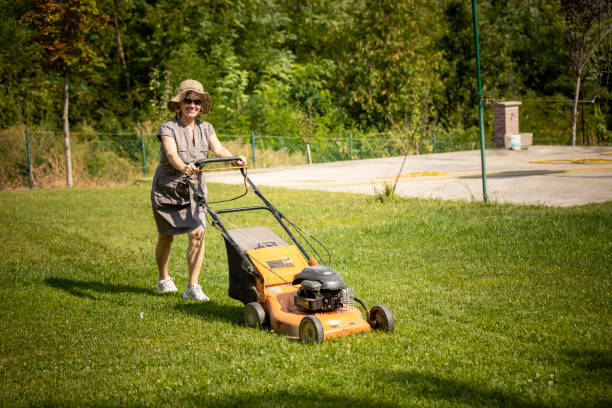 Middle Age Woman Mowing Lawn Stock Photo (Royalty Free